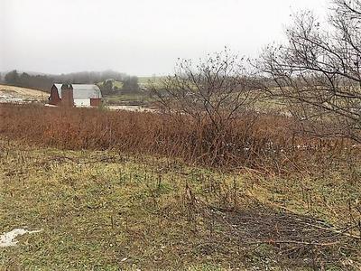 LOT#2 OREGON HILL RD, Morris, PA 16938 - Photo 1