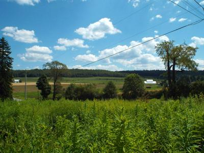 0 SWEDEN HILL ROAD, COUDERSPORT, PA 16915 - Photo 1