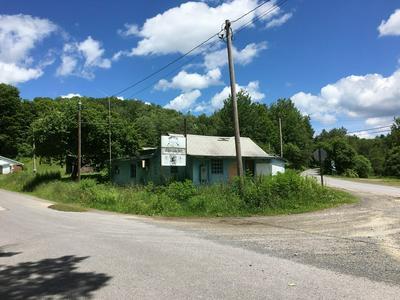 1418 BARK SHANTY RD, Austin, PA 16720 - Photo 2
