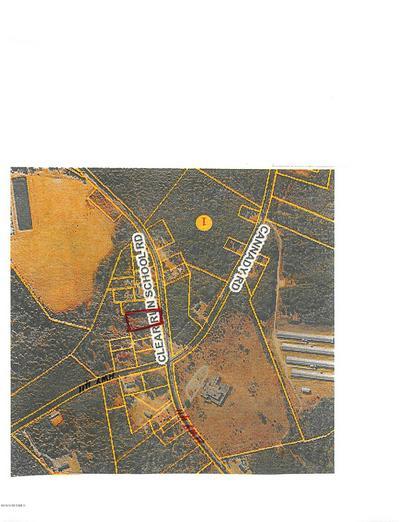 3 CLEAR RUN SCHOOL ROAD, Garland, NC 28441 - Photo 1