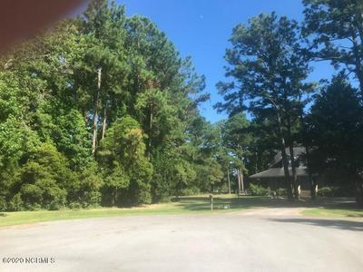 207 PRANCER DR # 91, Beaufort, NC 28516 - Photo 2
