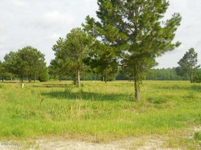 6 EVINS LANE # 6, Pinetown, NC 27865 - Photo 2