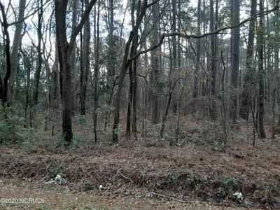 0 N OLD WIRE ROAD, Shannon, NC 28386 - Photo 2