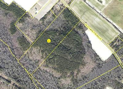 29.6 ACRES OLD FAYETTEVILLE ROAD # TRACT 1 ON SURVEY, Garland, NC 28441 - Photo 1