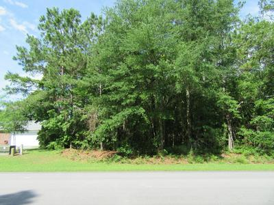 410 HARDISON DR # 55, Arapahoe, NC 28510 - Photo 1