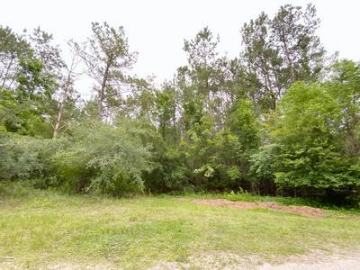 1626 LINDEN LN NW, Ash, NC 28420 - Photo 2