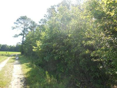 0 COOPER LANE, Jamesville, NC 27846 - Photo 1