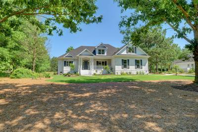 159 RED BERRY DR, Wallace, NC 28466 - Photo 1