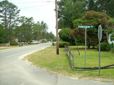 65 PINEVIEW DR, White Lake, NC 28337 - Photo 1