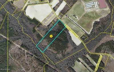 29.6 ACRES OLD FAYETTEVILLE ROAD # TRACT 1 ON SURVEY, Garland, NC 28441 - Photo 2