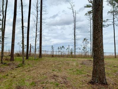 0 STATE RD 1902 OFF, Aurora, NC 27806 - Photo 2