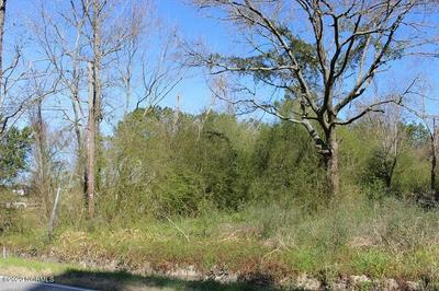 0 NEW ROAD, BURGAW, NC 28425 - Photo 2