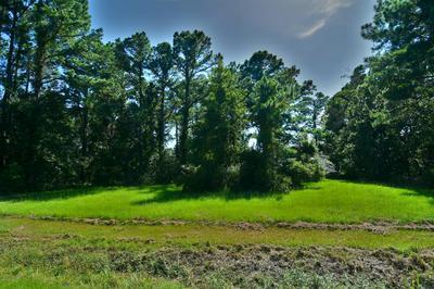 1890 WHITE FARM RD, Oriental, NC 28571 - Photo 2