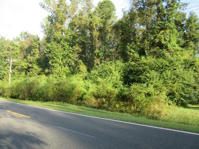 NEAR 1671 OLD WILMINGTON ROAD, Whiteville, NC 28472 - Photo 2