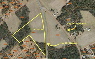 1603 701 BYPASS HIGHWAY, Whiteville, NC 28472 - Photo 1