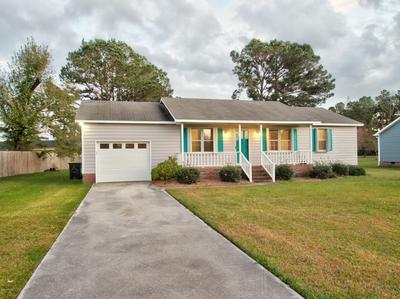 503 OLD HAMMOCK RD, Swansboro, NC 28584 - Photo 2