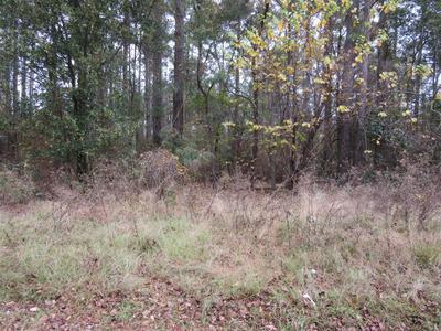 LOT 019 BUTTERFLY LANE, Shannon, NC 28386 - Photo 1