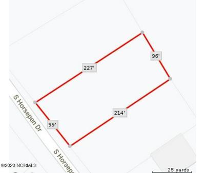 547 S HORSEPEN RD, Harrells, NC 28444 - Photo 1
