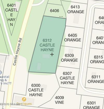 6312 CASTLE HAYNE RD, Castle Hayne, NC 28429 - Photo 2