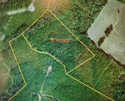 1900 OLD MILL CREEK RD SE, Winnabow, NC 28479 - Photo 1