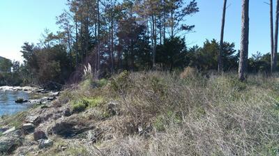 130 ROYS LANDING RD, Davis, NC 28524 - Photo 2