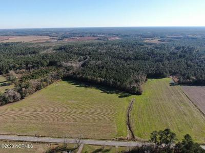 40 ACRES OLD FAYETTEVILLE ROAD, Garland, NC 28441 - Photo 2