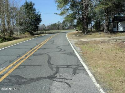 0 PERSIMMON ROAD, Rowland, NC 28383 - Photo 2