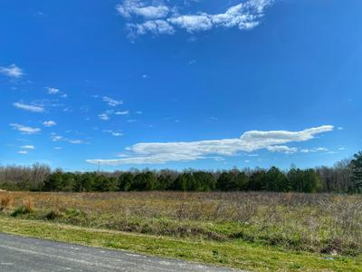 TBD HOUSTON ROAD, Trenton, NC 28585 - Photo 1