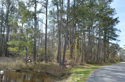 N/A HUNTERS POINT DRIVE, Vandemere, NC 28587 - Photo 2