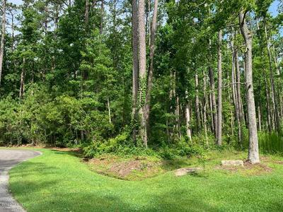 1006&1008 POSSUM PLACE, Oriental, NC 28571 - Photo 1