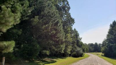 1869 J P RD # 8, Whitakers, NC 27891 - Photo 2