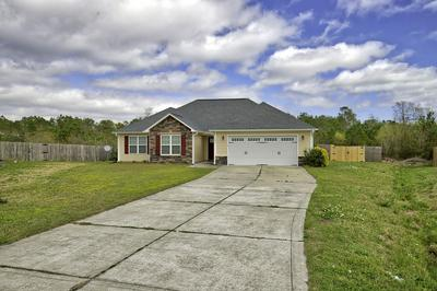 202 MARSH HAVEN DR, SNEADS FERRY, NC 28460 - Photo 2
