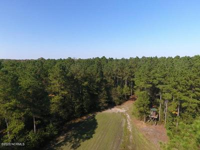 0 NC 210 HIGHWAY W, Garland, NC 28441 - Photo 2