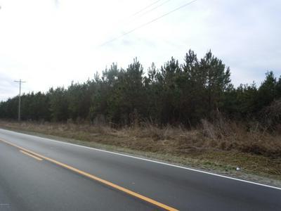 3048 MOLLIE RD, Clarendon, NC 28432 - Photo 2