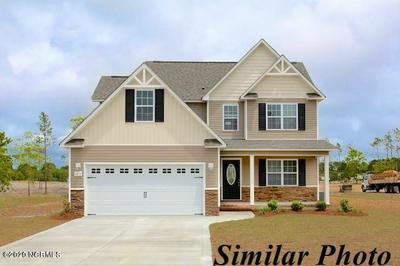 2174 BELGRADE SWANSBORO RD, Maysville, NC 28555 - Photo 1