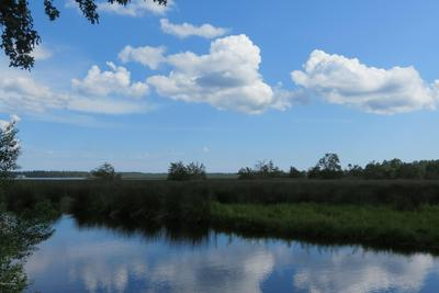 275 CANVASBACK DR, Bayboro, NC 28515 - Photo 1