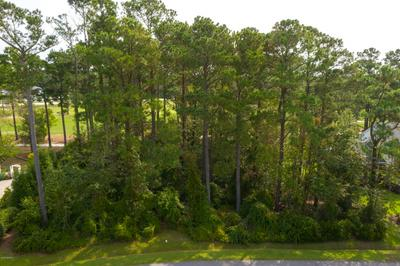 130 CAPTAINS LN, Sneads Ferry, NC 28460 - Photo 2