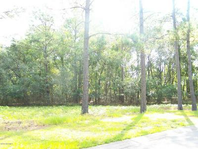 3529 SCUPPER RUN SE, Southport, NC 28461 - Photo 2
