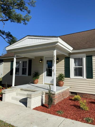 507 JENKINS AVE, Maysville, NC 28555 - Photo 2