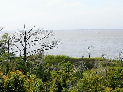 1700 SALTER PATH RD # 202-K, Indian Beach, NC 28512 - Photo 1