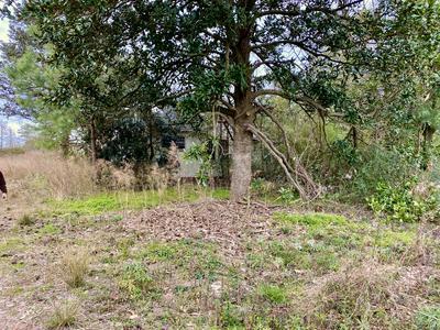 5215 PENDERLEA HWY, Willard, NC 28478 - Photo 1