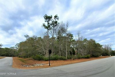 LOT 108 OYSTER HARBOR PARKWAY SW, Supply, NC 28462 - Photo 1