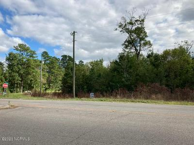 18.87 DANFORD ROAD, Bolivia, NC 28422 - Photo 2