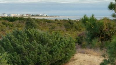 338 SERENITY LN, Holden Beach, NC 28462 - Photo 1