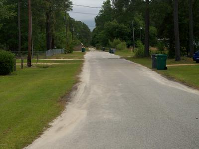 65 PINEVIEW DR, White Lake, NC 28337 - Photo 2