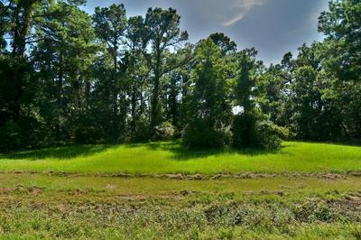 1890 WHITE FARM RD, Oriental, NC 28571 - Photo 1