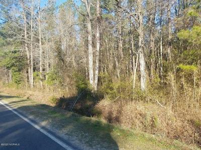 0 PINEY WOODS ROAD, Willard, NC 28478 - Photo 1
