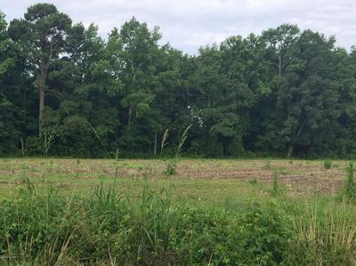 000 STATE RD 2345, Kenly, NC 27542 - Photo 2