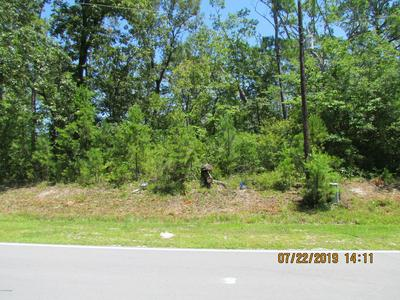 238 WHITE OAK BLUFF RD, Stella, NC 28582 - Photo 2