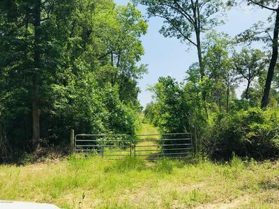 00 HOBBS ROAD, Roseboro, NC 28382 - Photo 2